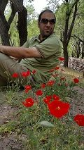 majid dehghan